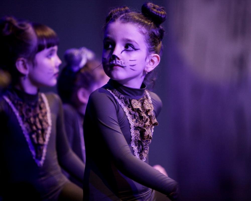 Cats Ballet Art 7