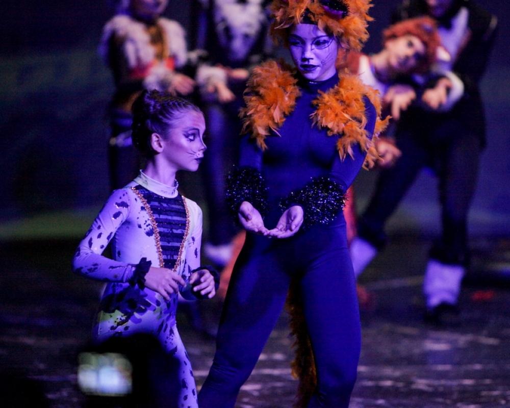 Cats Ballet Art 9