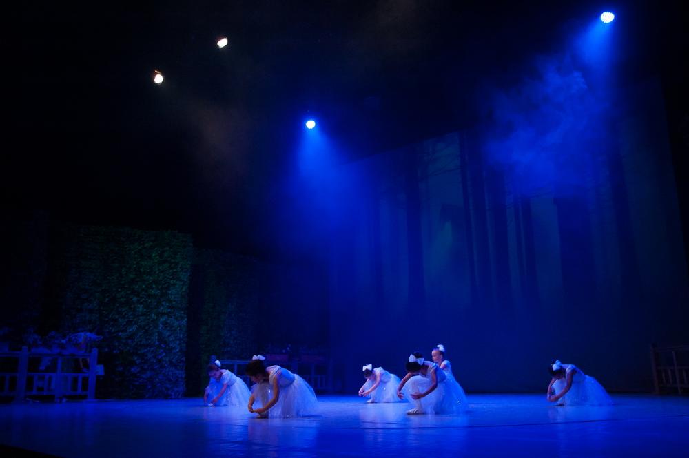 Giselle 6 Ballet Art
