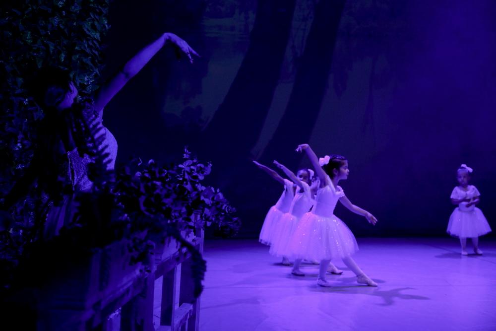 Giselle 8 Ballet Art