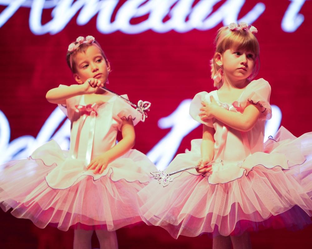 Spargatorul de nuci 11 Ballet Art