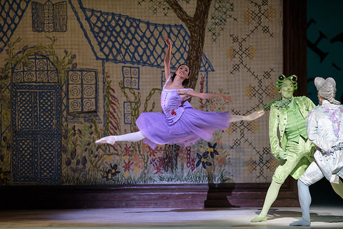 dansatorul de balet are o erecție